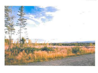 """Photo 12: LOT 9 BELL Place in Mackenzie: Mackenzie -Town Land for sale in """"BELL PLACE"""" (Mackenzie (Zone 69))  : MLS®# N227302"""