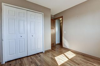 Photo 16: 126 Dovercliffe Way SE in Calgary: Dover Detached for sale : MLS®# A1082276