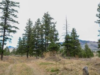 Photo 12: 5511 BARNHARTVALE ROAD in Kamloops: Barnhartvale Lots/Acreage for sale : MLS®# 161226