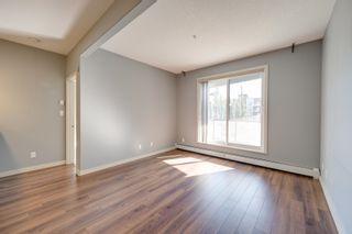 Photo 12: 243 308 AMBLESIDE Link in Edmonton: Zone 56 Condo for sale : MLS®# E4260650