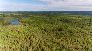 Photo 14: Lots St. Phillips Street in Bridgewater: 405-Lunenburg County Vacant Land for sale (South Shore)  : MLS®# 202115973