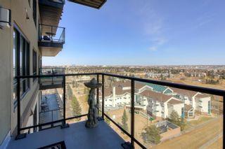Photo 26: 1209 2755 109 Street in Edmonton: Zone 16 Condo for sale : MLS®# E4238872