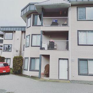 Photo 7: 203 4685 Alderwood Pl in : CV Courtenay East Condo for sale (Comox Valley)  : MLS®# 870469