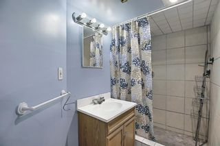 Photo 34: 367 Maitland Crescent NE in Calgary: Marlborough Park Detached for sale : MLS®# A1093291