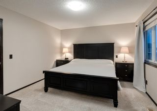 Photo 24: 69 ELGIN MEADOWS Link SE in Calgary: McKenzie Towne Detached for sale : MLS®# A1098607