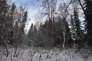 """Photo 22: 3 3000 DAHLIE Road in Smithers: Smithers - Rural Land for sale in """"Mountain Gateway Estates"""" (Smithers And Area (Zone 54))  : MLS®# R2280165"""