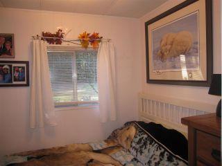 "Photo 7: 23353 CALVIN Crescent in Maple Ridge: Silver Valley Manufactured Home for sale in ""GARIBALDI VILLAGE"" : MLS®# R2320406"