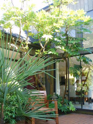 Photo 2: 7491 BRIDGE Street in Richmond: McLennan North House for sale : MLS®# V633616