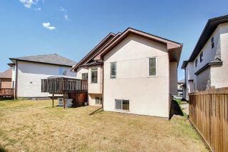 Photo 27: 6907 17 Avenue in Edmonton: Zone 53 House for sale : MLS®# E4259901