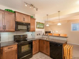 Photo 29: 46 WALDEN Court SE in Calgary: Walden Detached for sale : MLS®# C4238611