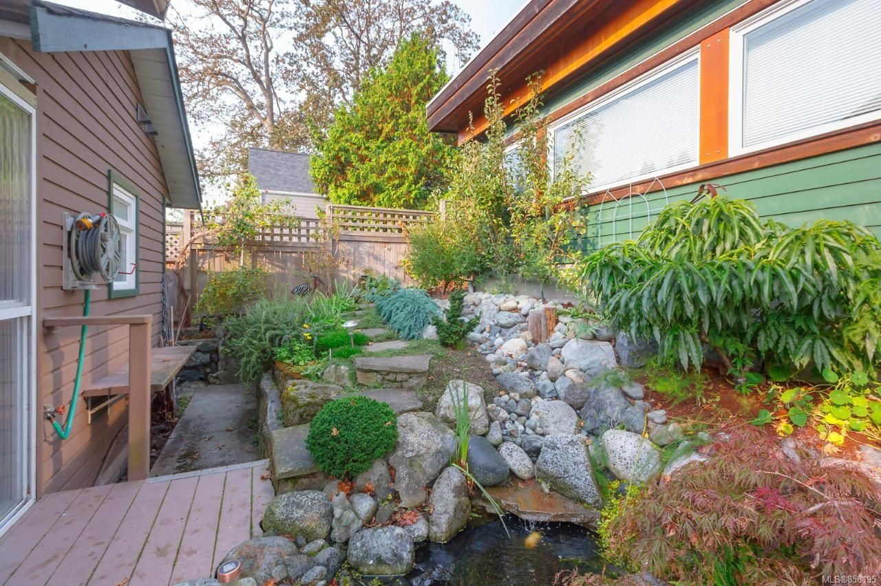 Photo 33: Photos: 1542 Westall Ave in : Vi Oaklands House for sale (Victoria)  : MLS®# 858195