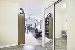 Photo 5: 110 11 DOVER Point SE in Calgary: Dover Apartment for sale : MLS®# A1118273