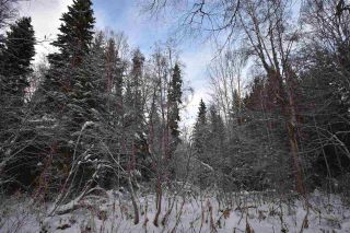 """Photo 21: 3 3000 DAHLIE Road in Smithers: Smithers - Rural Land for sale in """"Mountain Gateway Estates"""" (Smithers And Area (Zone 54))  : MLS®# R2280165"""