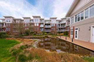 """Photo 19: 334 4280 MONCTON Street in Richmond: Steveston South Condo for sale in """"THE VILLAGE"""" : MLS®# R2263672"""