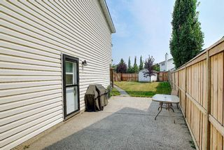 Photo 37: 94 Erin Meadow Close SE in Calgary: Erin Woods Detached for sale : MLS®# A1135362