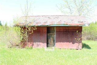 Photo 10: Pt Lt 1 Concession 13 Road in Brock: Rural Brock Property for sale : MLS®# N3143558