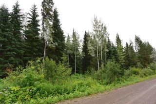 """Photo 2: LOT 11 GRANTHAM Road in Smithers: Smithers - Rural Land for sale in """"Grantham"""" (Smithers And Area (Zone 54))  : MLS®# R2604035"""