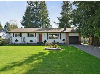 Photo 1: 20280 36B Ave in Langley: Home for sale : MLS®# F1307916