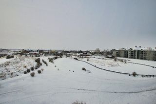 Photo 40: 7402 304 MacKenzie Way SW: Airdrie Apartment for sale : MLS®# A1081028