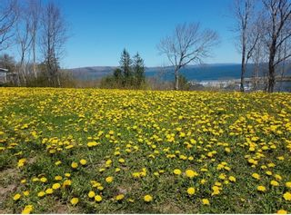 Photo 3: Lot Second Avenue in Digby: 401-Digby County Vacant Land for sale (Annapolis Valley)  : MLS®# 202104794
