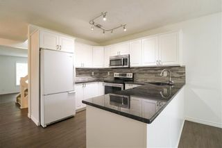 Photo 10: 87 Charbonneau Crescent in Winnipeg: Island Lakes Residential for sale (2J)  : MLS®# 202119408