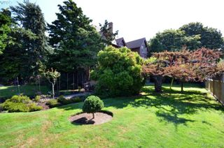 Photo 3: 3895 Hobbs St in VICTORIA: SE Cadboro Bay Multi Family for sale (Saanich East)  : MLS®# 663488