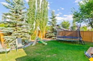 Photo 46: 307 CHAPARRAL RAVINE View SE in Calgary: Chaparral House for sale : MLS®# C4132756