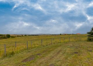 Photo 16: 322188 135 Street W: Rural Foothills County Detached for sale : MLS®# A1131052