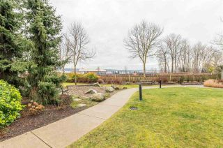 """Photo 29: 208 250 SALTER Street in New Westminster: Queensborough Condo for sale in """"PADDLERS LANDING"""" : MLS®# R2542712"""