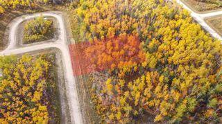 Photo 4: 48 Black Spruce Road in Glen Bay: Gimli Residential for sale (R26)  : MLS®# 202122724