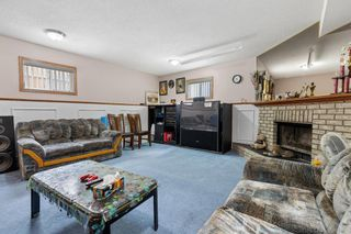 Photo 19: 249 martindale Boulevard NE in Calgary: Martindale Detached for sale : MLS®# A1116896