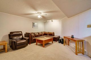 Photo 31: 712 MAPLETON Drive SE in Calgary: Maple Ridge Detached for sale : MLS®# A1018735