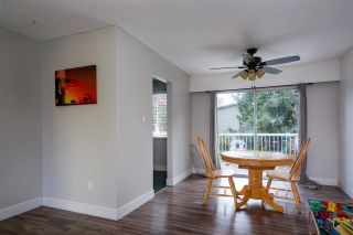 Photo 3: 22918 EAGLE Avenue in Maple Ridge: East Central House for sale : MLS®# R2121887