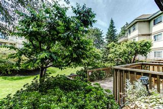 """Photo 15: 113 20120 56 Avenue in Langley: Langley City Condo for sale in """"BLACKBERRY LANE"""" : MLS®# R2076345"""