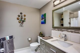 Photo 25: 691 COPPERPOND Circle SE in Calgary: Copperfield Detached for sale : MLS®# A1063241