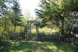 Photo 4: : Rural Camrose County House for sale : MLS®# E4262815