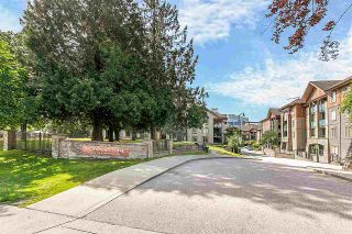 """Photo 18: 3311 240 SHERBROOKE Street in New Westminster: Sapperton Condo for sale in """"Copperstone"""" : MLS®# R2381606"""