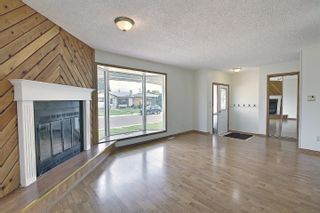 Photo 16: 4911 52 Avenue: Redwater House for sale : MLS®# E4260591