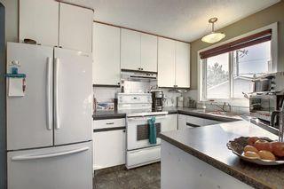 Photo 4: 1711 65 Street NE in Calgary: Pineridge Detached for sale : MLS®# A1038776