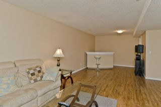 Photo 31: 117 Evansmeade Circle NW in Calgary: Evanston Detached for sale : MLS®# A1042078