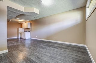 Photo 33: 165 Castlebrook Way NE in Calgary: Castleridge Semi Detached for sale : MLS®# A1107491