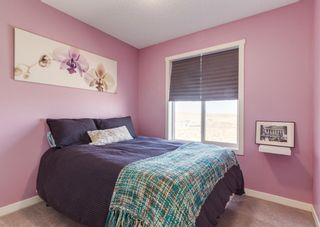 Photo 27: 285 Copperpond Landing SE in Calgary: Copperfield Row/Townhouse for sale : MLS®# A1122391