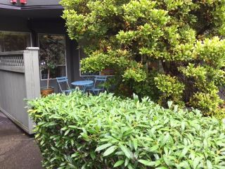 """Photo 16: 210 2800 CHESTERFIELD Avenue in North Vancouver: Upper Lonsdale Condo for sale in """"Somerset Green"""" : MLS®# R2115037"""