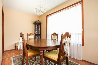 Photo 18: 170 Leila Avenue in Winnipeg: Scotia Heights Residential for sale (4D)  : MLS®# 202115201