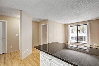 Photo 15: 107 835 19 Avenue SW in Calgary: Lower Mount Royal Condo for sale : MLS®# C4117697