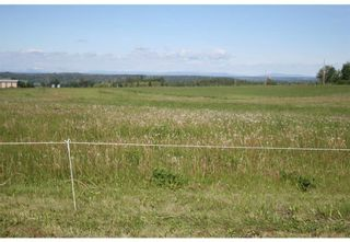 Photo 3: 3 4141 Twp Rd 340: Rural Mountain View County Land for sale : MLS®# C4123342