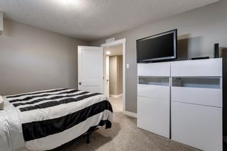Photo 33: 4816 30 Avenue SW in Calgary: Glenbrook Detached for sale : MLS®# A1072909