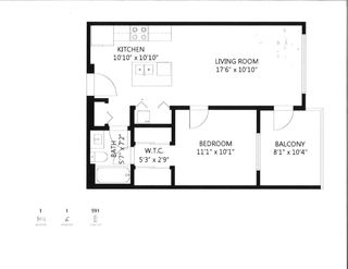 "Photo 20: 405 22315 122 Avenue in Maple Ridge: West Central Condo for sale in ""The Emerson"" : MLS®# R2586573"