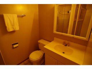 Photo 11: 53 Mapleridge Avenue in WINNIPEG: Fort Garry / Whyte Ridge / St Norbert Residential for sale (South Winnipeg)  : MLS®# 1110418