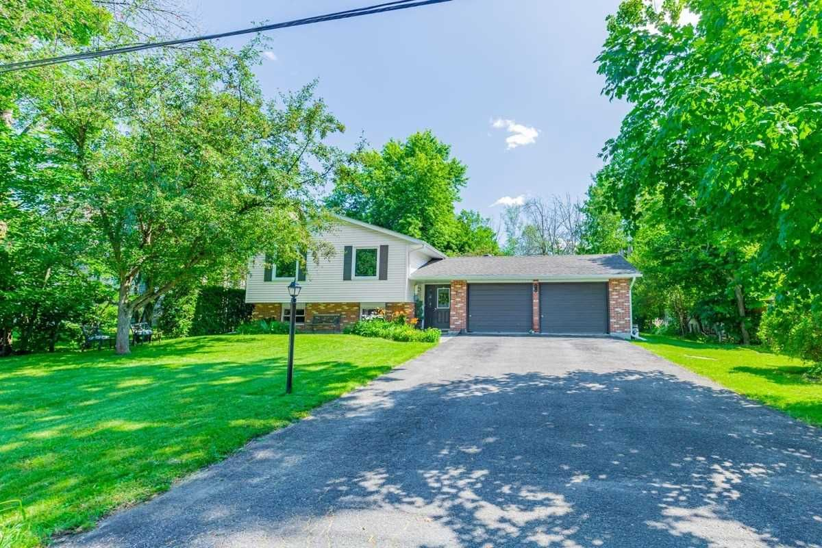 Main Photo: 211 Jean Street in Barrie: South Shore House (Bungalow-Raised) for sale : MLS®# S5323838